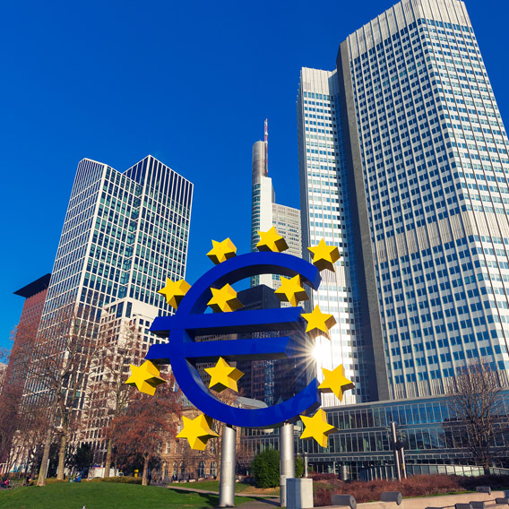 Assessing the Impact of Asset Purchase Program on Euro Region Banks